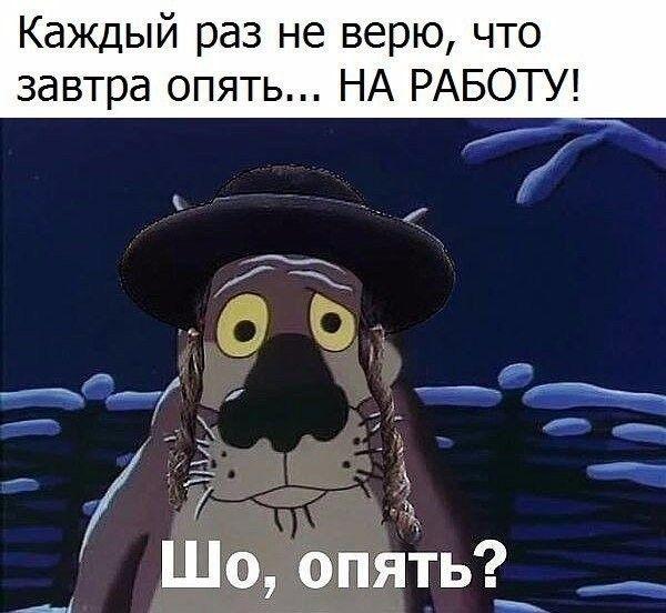 Шо, опять?