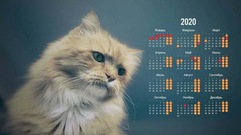 Обои на рабочий стол с календарем 2020 года (3)