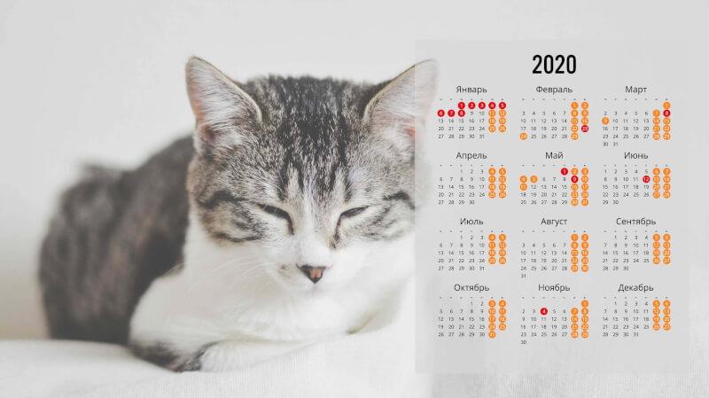 Обои на рабочий стол с календарем 2020 года (16)