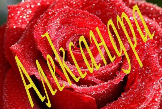 Значение и происхождение имени Александра.