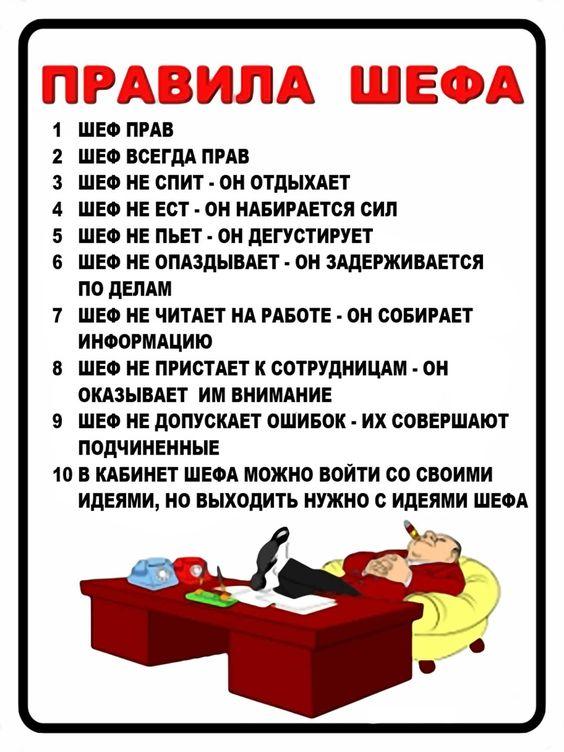 Правила шефа